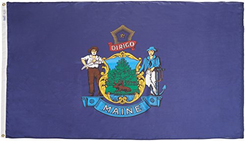 Annin Flagmakers Model 142270 Maine State Flag 4x6 ft. Nylon SolarGuard Nyl-Glo 100% Made in USA to Official State Design Specifications. (Shopping-maine)