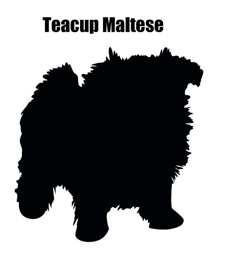 Teacup Maltese 2 pcs 3-1/4