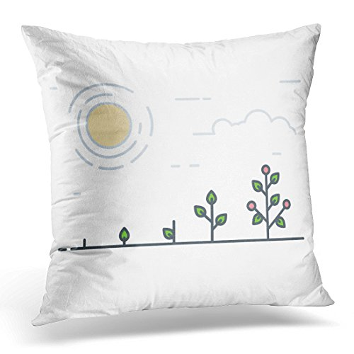 """Emvency Throw Pillow Cover Growing Plant Stages Seeds Sprout and Grow Vegetable Tomatoes Red Fruits Flowers Line Flat of Garden Decorative Pillow Case Home Decor Square 18"""" x 18"""" Pillowcase from Emvency"""