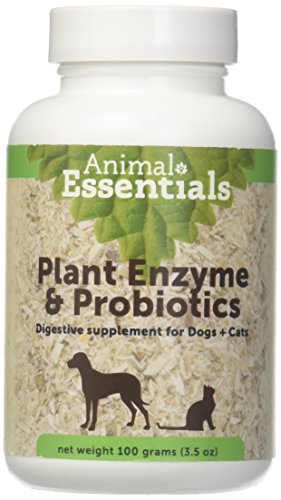 Animal Essentials Plant Enzyme & Probiotics Supplement for Dogs and Cats - 3.5 oz Animal Essentials Plant