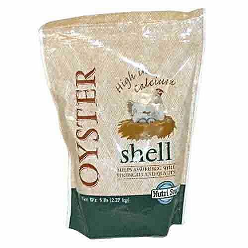 oyster shell for chickens - 3