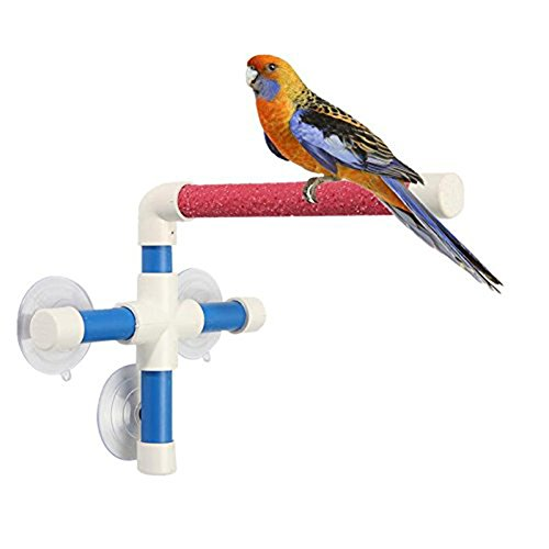 Portable Suction Cup Shower Perch Stand for Bird Parrot Macaw Cockatoo African Greys Budgies Parakeet Cockatiel Conure Lovebirds Bath Perch Toy