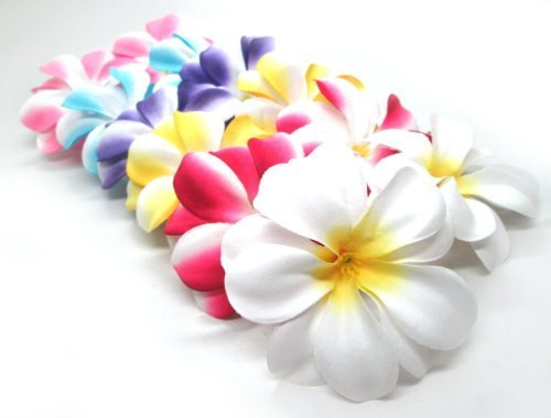 "(100) Assorted Hawaiian Plumeria Frangipani Silk Flower Heads - 3"" - Artificial Flowers Head Fabric Floral Supplies Wholesale Lot for Wedding Flowers Accessories Make Bridal Hair Clips Headbands Dress"
