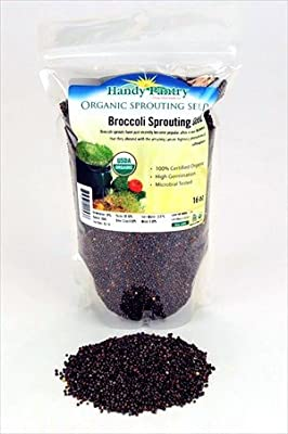 Organic Broccoli Sprouting Seeds - Handy Pantry Brand - Edible Seed, Gardening, Hydroponics, Microgreens, Growing Salad Sprouts & Food Storage- Brocolli Sprouts Contain Sulforaphane