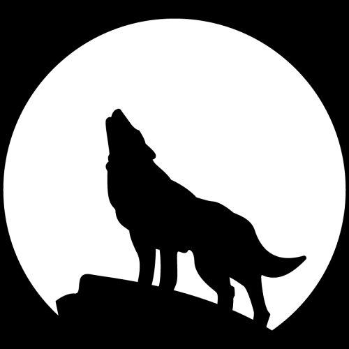 - Chroma 3689 Howling Wolf 6