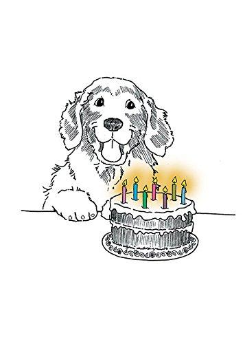 Amazon Com Golden Retriever Happy Birthday Fine Art Greeting Card