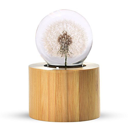 MYLIFESTYLE Musical Box Real Specimens Dandelion Ball with Wood Base Music Box Gift for Christmas/Birthday/Valentine's Day, Melody Castle in The - Box Castle Gift