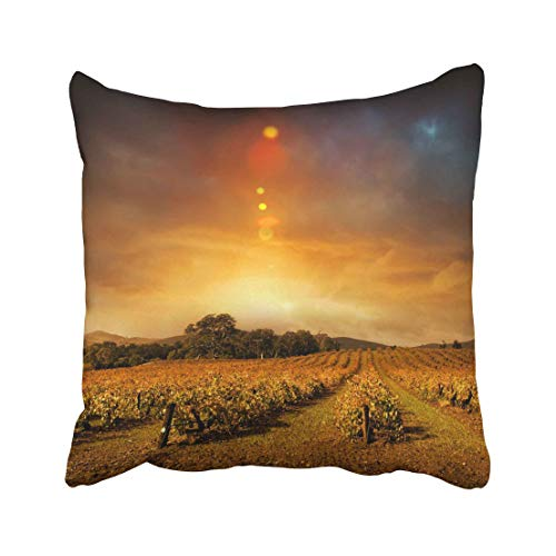 Emvency Vineyard Beautiful Sunset Over Barossa Valley in Autumn Wine Landscape Panoramic Winter Farm Moody Sky Throw Pillow Covers 20x20 Inch Decorative Cover Pillowcase Cases Case Two Side