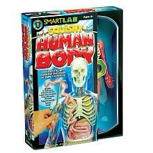 [SmartLab Toys Squishy Human Body] (Amazing Toys Lab)