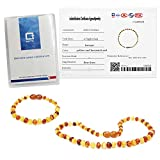 Temgee Baltic Amber Necklace Gift Set - Raw Amber
