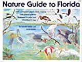 Nature Guide to Florida, Richard Rabkin and Jacob Rabkin, 0916224449