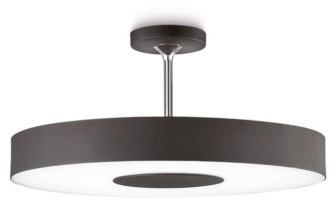 Philips instyle alexa ceiling light black includes 1 x 60 watts philips instyle alexa ceiling light black includes 1 x 60 watts 2gx13 bulb mozeypictures Choice Image