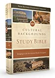 NRSV, Cultural Backgrounds Study