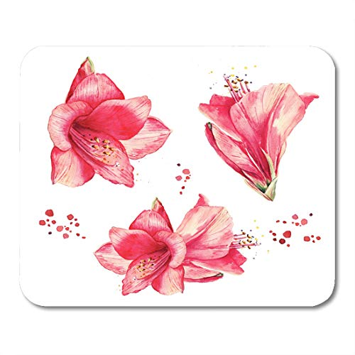 Boszina Mouse Pads Aquarelle Pink Exotic Watercolor Floral Vintage Lily Flowers Collection of Red Amaryllis Drawing Bouquet Mouse Pad 9.5