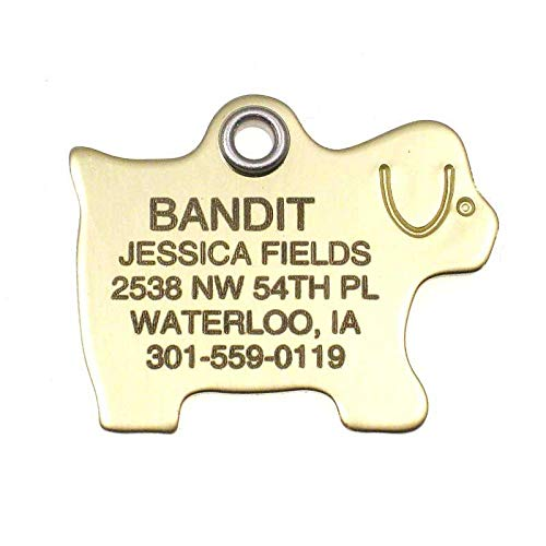 LuckyPet Pet ID Tag - Polished Brass Dog Shape - Custom Engraved Dog Tags - Durable, Easy to Read, Reflective on Back Side - Size: Medium