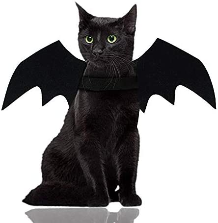 Malier Halloween Cat Costume for Cats Dogs Pet Bat Wings Cat Dog Bat Costume Wings (Small) 19
