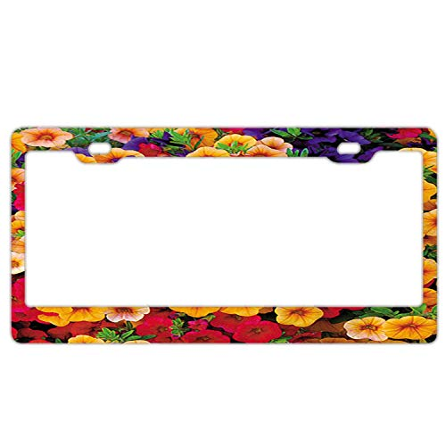 Colorful Morning Glory Black License Plate Frames Cover, 2 Holes Aluminum Metal Chrome Screw Cover Cap Tag Holder ()
