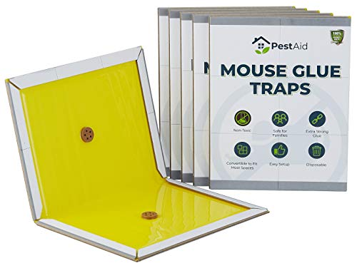 Mouse Glue Traps (5 pack)- Sticky Mouse Traps Glue Traps for Mice - Rat Glue Traps - Mice Traps Indoor - Mouse Sticky Traps for Mice - Glue Traps for Mice and Rats - Rat Traps That Work Indoor Outdoor