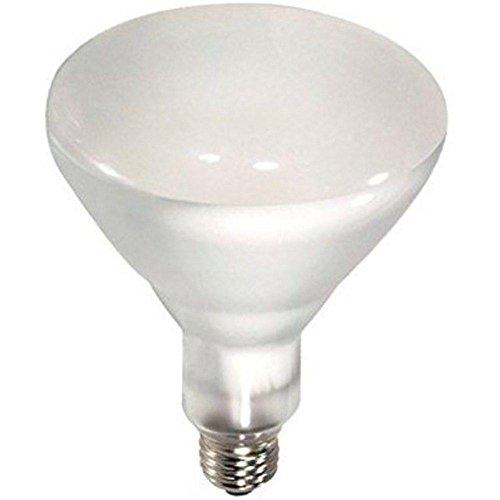 Br40 Reflector (Philips Lighting 389130 BR40 Reflector Incandescent Lamp 65 Watt E26 Medium Base 620 Lumens 2710K)