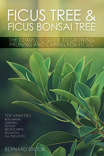 Ficus Tree and Ficus Bonsai Tree. The Complete Guide to Growing, Pruning and Caring for Ficus. Top Varieties: Benjamina, Ginseng, Retusa, Microcarpa, Religiosa all included. (Pruning Ficus Tree)