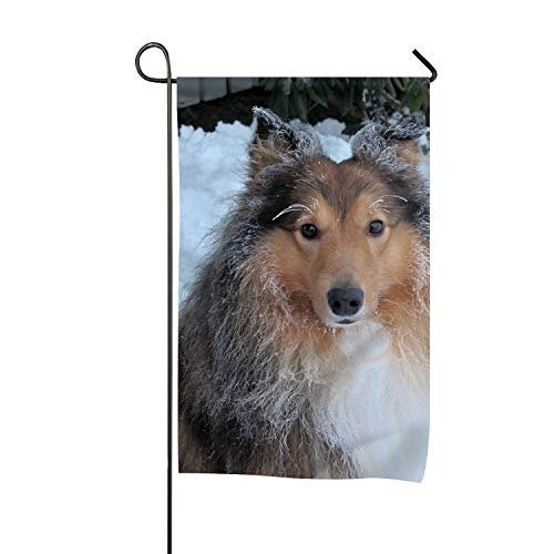 SHRGRGR Winter Shetland Sheepdog Welcome Home Flag Seasonal Garden Flags for Outdoors Yard Double-Sided