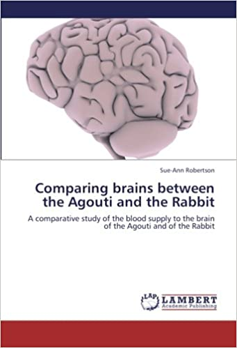 Comparing Brains Between The Agouti And The Rabbit A Comparative
