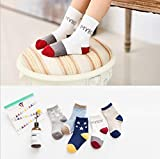 10 Pairs Kids Toddler Boys Girls Colorful Novelty