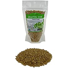 Organic Barley Seeds - 8 Oz - Whole (Hull Intact) Barleygrass Seed - Ornamental Barley Grass, Juicing - Grain for Beer Making, Emergency Food Storage & More