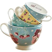 Fanci Baking by Captivate Brands FNCERMCUP Measuring Cups, Assorted