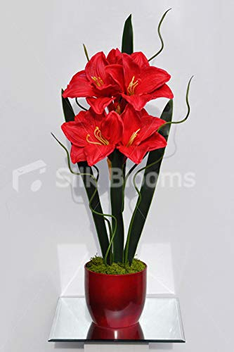 Silk-Blooms-Ltd-Artificial-Red-Fresh-Touch-Amaryllis-and-Curly-Wood-Flower-Display-wOrchid-Leaves
