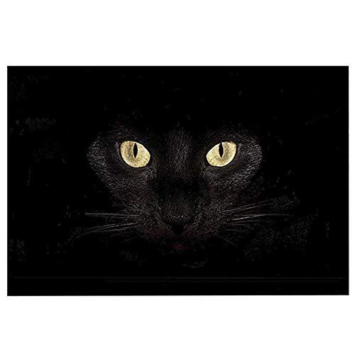 """ChezMax Non-Slip Doormat Coral Fleece Indoor Outdoor Kitchen Floor Rug Front Door Mat Funny Flannel Carpet Black Cat 23.62"""" X 15.74"""""""