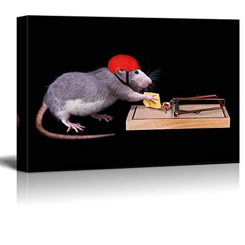 (Gogobebe Canvas Wall Art Print Paintings - A Rat Wearing a Helmet is Trying to Steal a Piece of Cheese That is Bait in a Rat Trap - 20