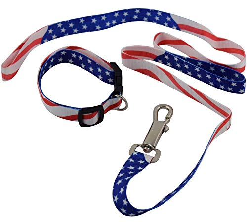 BUNFIREs American US Flag Dogs Collar and Leash Set Patriotic, Fourth of July Dog Collar, Independence Day Heavy Duty Adjustable for Small Medium Large Breeds - Poppy Flag