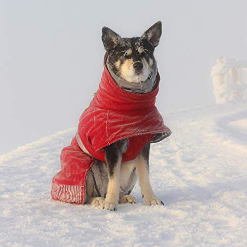 Image of Hurtta Extreme Warmer Dog Winter Jacket, Lingon, 26 in