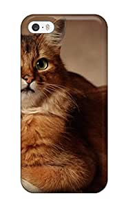 Best New Kitty On Chair Ledge Tpu Skin Case Compatible With Iphone 5/5s
