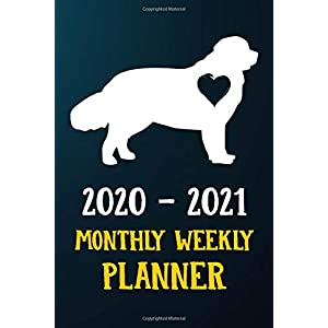 2020 2021 Monthly Weekly Planner: Newfoundland Puppy Dog 2020 2021 Monthly Weekly Daily Planner Calendar Schedule Organizer Appointment Journal Notebook For Newfoundland Dog Owners and Puppy Lovers 22