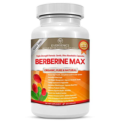 Berberine All Natural Supplement Normalizes Cholesterol