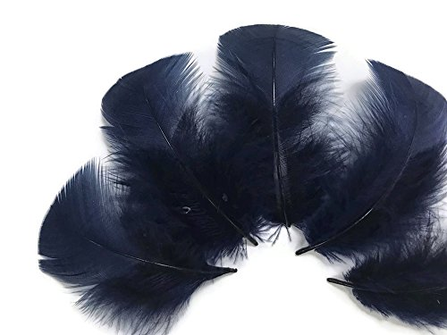 - Moonlight Feather | 1 Pack - Navy Blue Turkey T-Base Plumage Feathers 0.50 oz. Dreamcatcher, Wedding, Costume Feathers