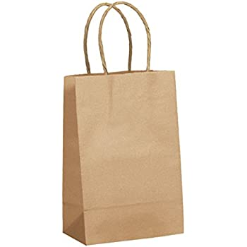 Amazon.com: 100 Rose / Prime Natural Kraft Shopping Bags with ...