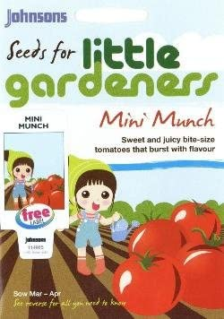 MIni Munch Johnsons Tomato Seeds Little Gardeners