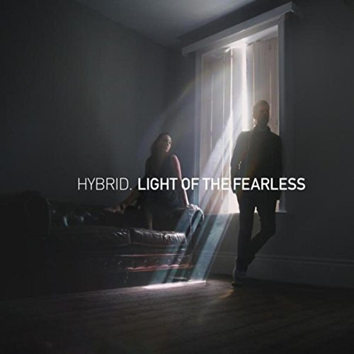 Top 2 best hybrid light of the fearless album for 2020