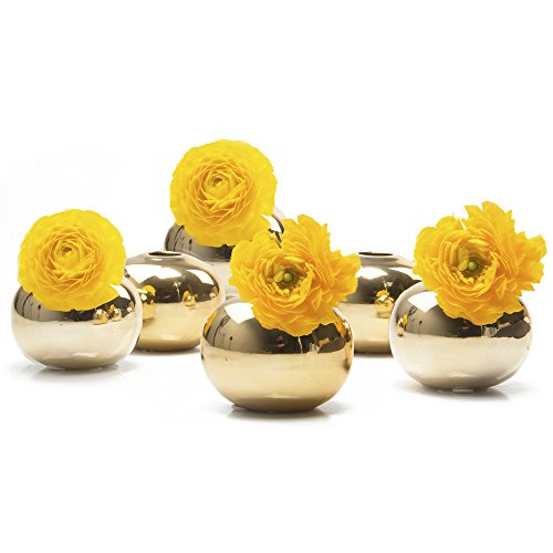 val Ceramic Flower Vase, Decorative Modern Floral Vase for Home Decor Living Room Centerpieces and Events, Cute Bud Vase - Bulk 6 Set of 6 - Gold (Oval Centerpiece)