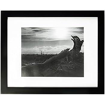 Amazon.com: Golden State Art, 11x14 Black Photo Frame - Wood, Real ...