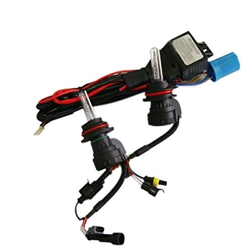 Xenon Dual Filament Lamp - 6