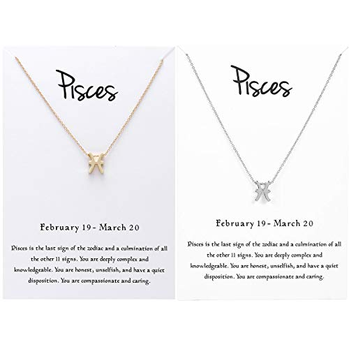 JONERISE 2 Pack 12 Constellation Pendant Necklace Zodiac Sign Necklace with Birthday Gifts Message Card,Gold and Silver (Pisces)