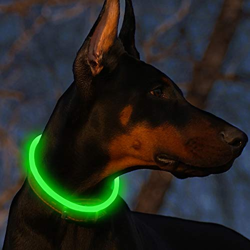BSEEN LED Dog Collar - Cuttable Water Resistant Glowing Dog Collar Light Up, Battery Powered Pet Necklace Loop for Small, Medium, Large Dogs (Green)