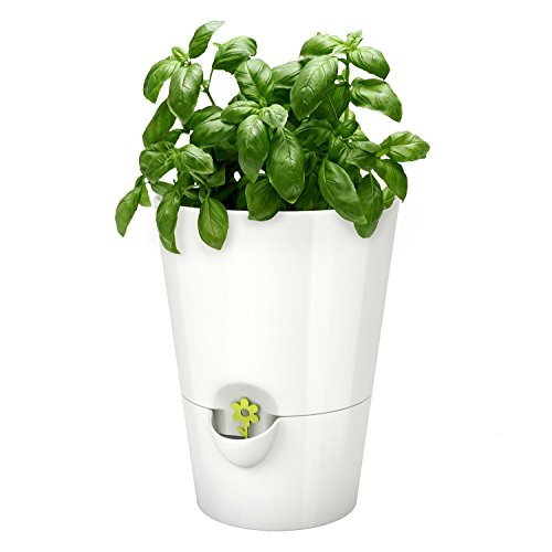 Herb Garden Mint (Emsa Germany: Fresh and Healthy Herbs for Weeks – Indoor Garden | Stylish self-watering Planter, Foolproof & Easy to use | 5.1 inch | White)
