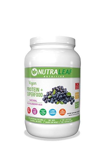 NUTRALEAF NUTRITION Vegan Protein Blueberry, 0.02 Pound by NUTRALEAF NUTRITION