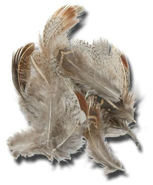 Amazon com : Partridge Hackle - Color Brown : Fly Tying