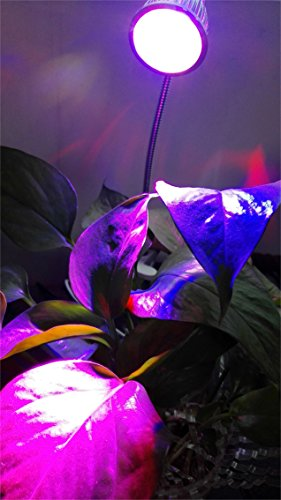 LED Grow Lights For Indoor Plants MOKOQI 5W Clip Light Lamp U0026 Flexible  Gooseneck 360 Degree For Hydroponic Garden Greenhouse Flower Exhibition  Farm Pot ...
